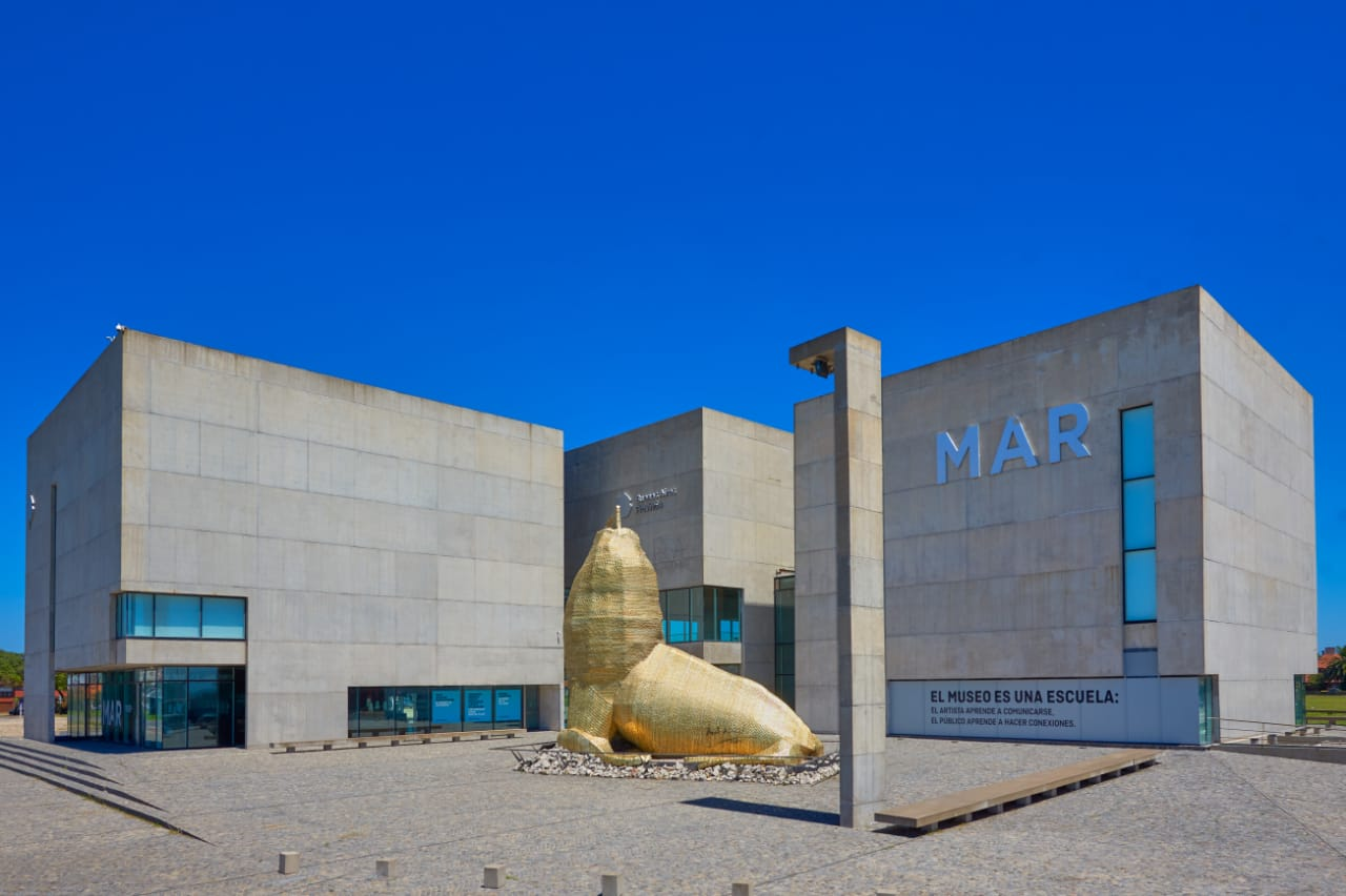 El Museo MAR reabre sus puertas